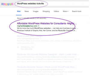 Affordable WordPress Websites for Consultants, circled - Land on page 1 of Google