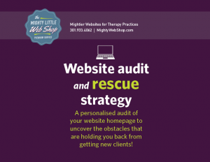 Website audit and rescue stragegy